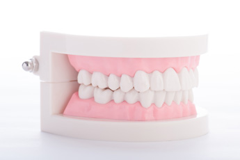 大東にし歯科医院 入れ歯・ブリッジ